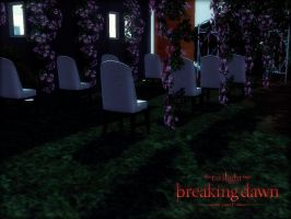 BD PART 1 Wedding the sims 3 soon as the film by Tokimemota