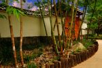 Teahouse Gate and Bamboo by AndySerrano