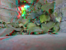 Leaves anaglyph by mrkane27