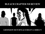 Bleach Chapter 518 Review by denzel94