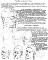 Facial Proportions Worksheet 4 by lantairvlea