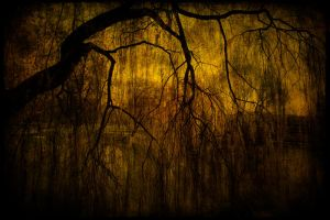Crying by Riffo