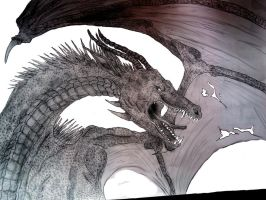 Dragon pen and pencil drawing by Kaikoura