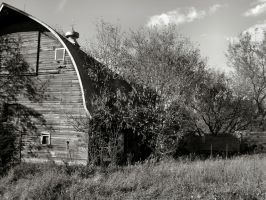 The Old Barn Down the Road by mrmd53
