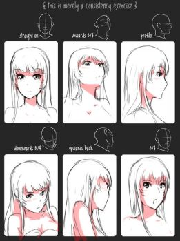 Consistency Exercise with Lucchan by SWORDWALTZWORKS