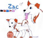 Zac Ref Sheet by TheRealHiro
