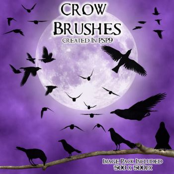 Crow PSP 9 Brushes by zememz