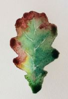 Autumn oak leaf 2 by Isadorrah