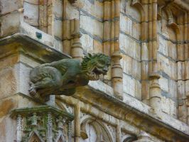 Brussel Gargoyle 2 by Art-and-books