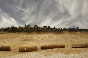 Rolling HIlls With Logs Background Stock0145 3 by annamae22