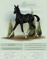 WS Scirocco Foal Ref by Tigra1988