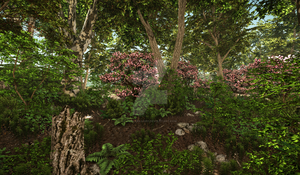 Uninventive title about forests and pink flowers by TyrantTR