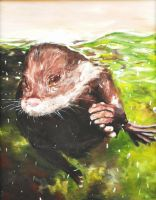 Otter painting by VictorianExcentric