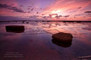 Colour Explosion by FireflyPhotosAust