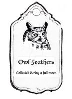 Owl Feather Label by Bwabbit