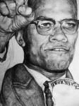 malcolm x by Hayley-baby
