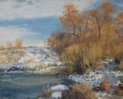 Winter etude in Lugansk by dismwork