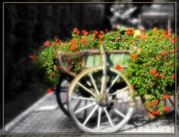 chariot... reloaded by pery
