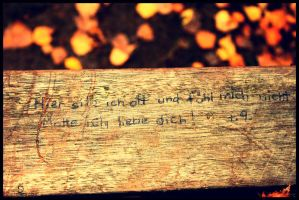 Something written in a bench by Redsun182