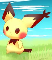 Pichu PI by Pand-ASS
