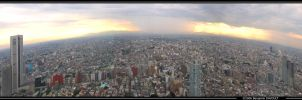 Shinjuku panorama by Benn25