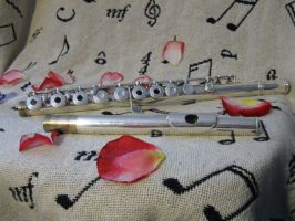 flute and rose petals 1 by MoonlitReverie85