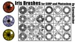 Iris Brushes for GIMP and Photoshop by CzarnaArcher