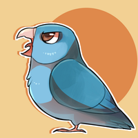 birb by WindFlite