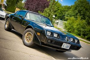 Bandit Trans Am by AmericanMuscle