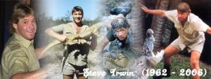 A tribute to Steve Irwin by Funkyicecube