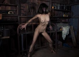 Tool Shed by twinphoto