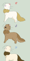 OOC: The players of Catada. by Ask-Catada