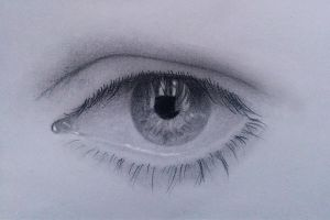 Eye study by moldovangmihai