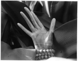 Hand of Herne by LycanDancer