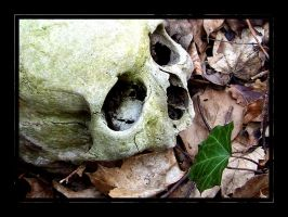 Life and Death II by DantesInferno