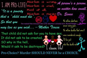 I am Pro-life, Are you? by ScreamingIsMyPassion
