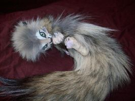 Baby Wild Cat Flop Doll by blackiceheart