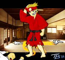 """""""The Flash"""" Takes Karate by Eques-Ardor"""