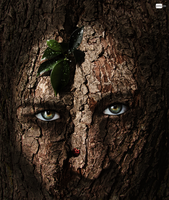 Tree face by paujas