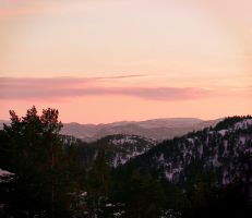 Pink view by Linnette