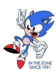 Sonic: In The Zone Since 1991 by haydenyale