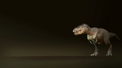Tyrannosaurus. Animation test by Swordlord3d