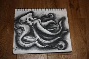 skull octy charcoal by heely