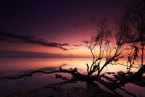 Untouched by fadilfb. by Scapes-club