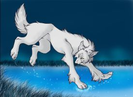 Wolf_Lineart_colored by WhiteSpiritWolf