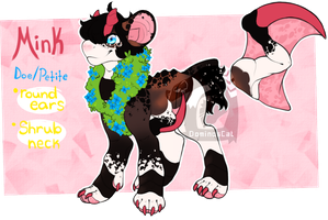 Mink Reference Sheet (2015) by Dominos-Cat