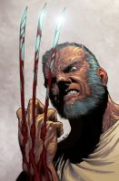 Old man Logan by GiovaniKososki