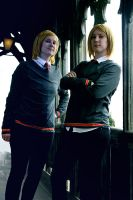 Fred and George by LadyDeadPooly