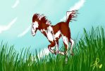 Paint_Horses_Flying_Colours by XxMewMewTheMuffinxX