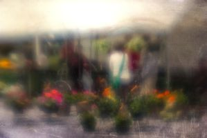 Flower Shopping by pubculture